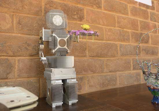 The robot model